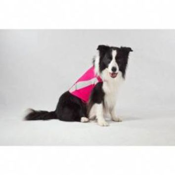 Thundershirt Pink Polo XLarge