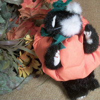 Black and White Stuffed Plush Cat Dress in Handcrafted Pumpkin Halloween Costume Fall Home Decor