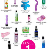 Home Sex Toy Party Kit- Level One