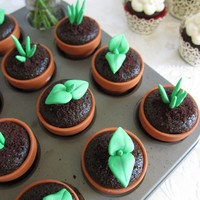 Sweet Sprout Cupcake Toppers (12 Sprouts &  Terra Cotta Flower Pods)