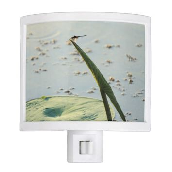 Meditation Dragonfly On Wetland Park Lily Pad Night Light