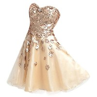 VILAVI A-line Short Tulle Appliques Cocktail Dresses Size 4 Color Champagne
