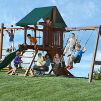 Kid's Creations Two Ring with Monkey Bars Redwood Swing Set