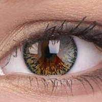 Elegance Brown Colour Contact Lenses | EyesBright.com