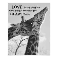 Sweet Giraffe Poster LOVE is what your heart feels