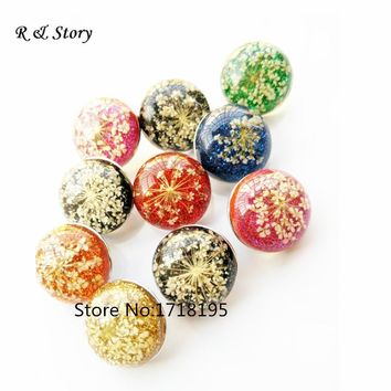 2017 New Glass Snap Buttons Dried Flowers Charms Fit Interchangeable Bracelet for Snap Jewelry