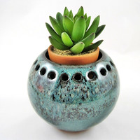 Indoor garden, MINI planter, cactus bowl, small decorative vase,small planter - IN stock - Cube3