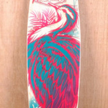 Shop Stella Longboards at The Longboard Store