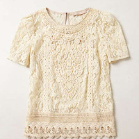Anthropologie - Lace Firenze Blouse