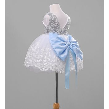 High Quality Lace Princess Baby dress Cute Fashion Baby Girl Dress Embroidered Sequins flower Girl Dress