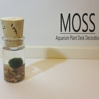 MOSS Aquarium Plant Desk Decoration