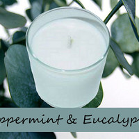 Peppermint and Eucalyptus Candle in Tumbler 13 oz