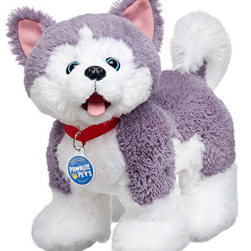 15 in. Promise Pets Husky Stuffed Animal | Build-A-Bear