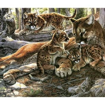beautiful animal mouse pad puma family  number 1