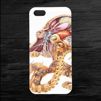 Octopus Anatomy Cross Section iPhone 4 and 5 Case