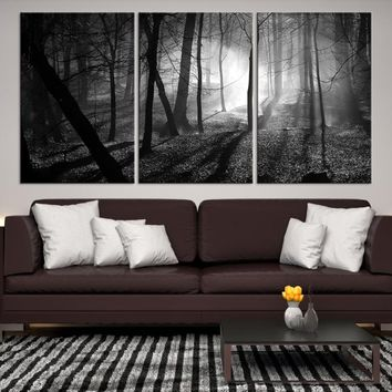 47570 - Black and White Sunlight in the Leafless Forest, Large Forest Wall Art, Forest Canvas Print, Bare Trees Wall Art, Framed Wall Art, Housewarming Gift, Extra Large Wall Art