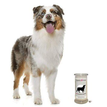 I Love My Australian Shepherd! - Companion Candles