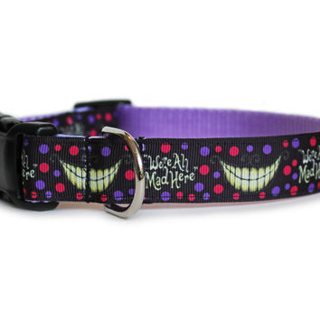 We're All Mad Here Dog Collar