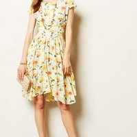 Pleated Matilija Dress by Fleur Wood Yellow