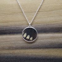 Sterling Silver Butterfly Wing Pendant
