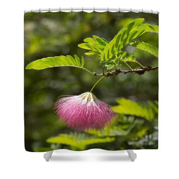 Pink Powderpuff Blossom Shower Curtain