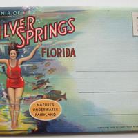 Vintage ©1935 Underwater Fairyland Foldout Postcard book by Teich - Silver Springs Florida- Old, Antique