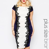 Paper Dolls Plus Lace Applique Colour Block Pencil Dress at asos.com