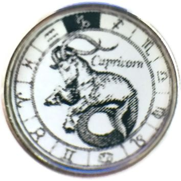 Capricorn Zodiac Sign In Horoscope Symbol 18MM - 20MM Charm for Snap Jewelry New Item