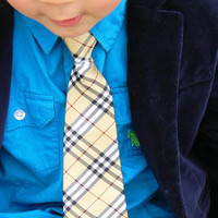 Burberry Inspired Tie