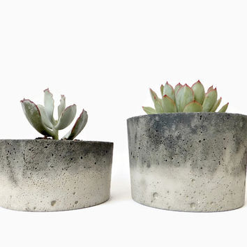 Concrete Pot for Succulent Cactus Grey Urban Industrial Planter Home Decor