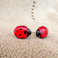 Ladybird earrings, Stud earrings, Red ladybird, Little ladybug stud, Ladybug, Insect, Bug, Red bug, Red earrings, Red jewelry, Tiny earrings