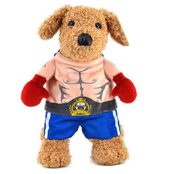 Walking Boxer Dog Cat Costume