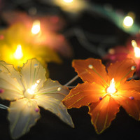 20 multi color flower handmade string light indoor outdoor night light display party bedroom decor classic
