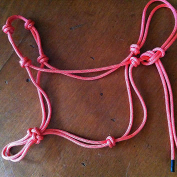 Horse Halter Hand Tied All polyester double braid by RowdysRopes