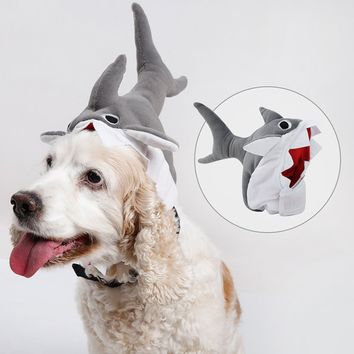 Dogs Cats Shark Hat