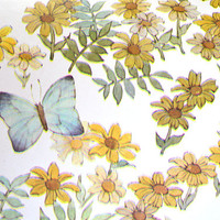 Butterfly Wallpaper- Vintage 70s Vinyl Wall Covering by the Yard