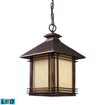 42103/1-LED Blackwell 1 Light Outdoor LED Pendant In Hazlenut Bronze - Free Shipping!