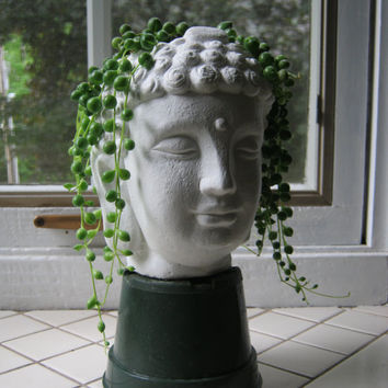 Buddha Head Planter, Succulent Plant Pot, Concrete Cement Home and Garden Decor, Air Plant Tillandsia Display