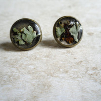 Black Lichen Studs by Heron and Lamb