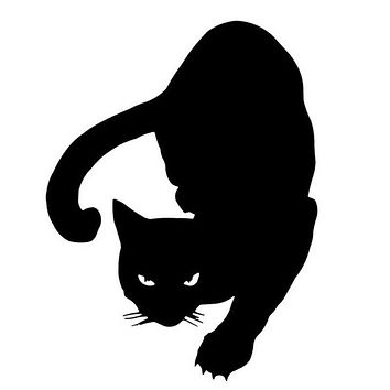 Reflective PET CAT Car Stickers Decals Motorcycle Accessories Car Styling  Removable