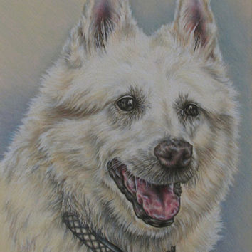 Personalized Pet Drawing in Color of ONE PET - Dog Portrait - Personalized Pet Portrait - Original Pencil - Pet Sympathy - Pet memorial-Dog