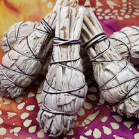 "WHITE SAGE STICK - Sage Smudge Bundle 3-4"" long Dried Sage Smudge Stick to Clear Energy"
