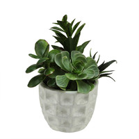 Artificial Mixed Green and Red Succulents with Crackle Finish Dimpled Pot