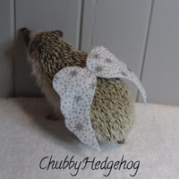 Angel Wings Costume  Hedgehog/Guinea pig  CHRISTMAS