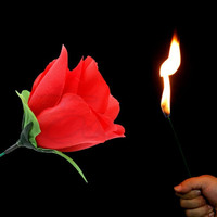 Novelty Stage Close Up Magic Trick Torch Rose to Fire Tricks Flame Flower