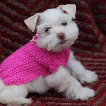 Dog jumper, Cat jumper, pink Dog coat, Home pets, Tiny dog clothes, dog dress Teacup puppy, In hot pink, with rose bud and pearls design.
