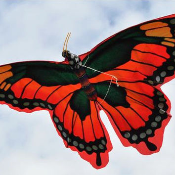 Butterfly Kite with 6 FT Wingspan Red