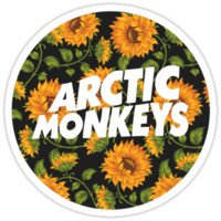 Arctic Monkeys Sunflower