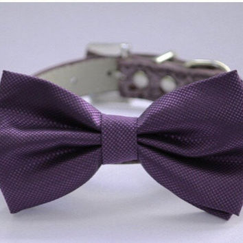 Purple wedding dog collar,  Dog Bow tie attach to high quality leather collar, Wedding accessory, Xlarge dog collar