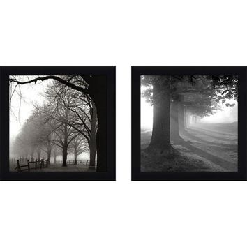 Misty Trees' 2 Piece Framed Photographic Print Set Under Glass